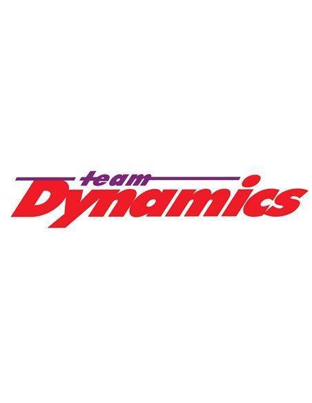 TEAM DYNAMICS